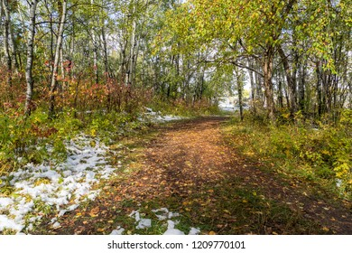 City park trail after early fall snowfall