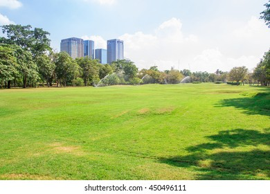 City park under blue sky with building background