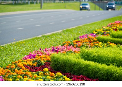 City photo, Flowerbeds in the city, in the background motorway with cars, Russia Naberezhnye Chelny 18,08,2018g