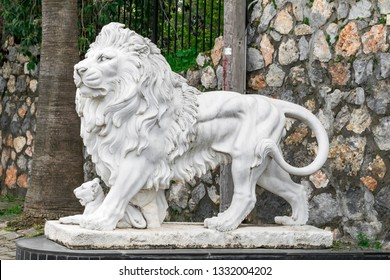 City sculpture of a lion and a lion cub at the entrance. Local landmark. Side view