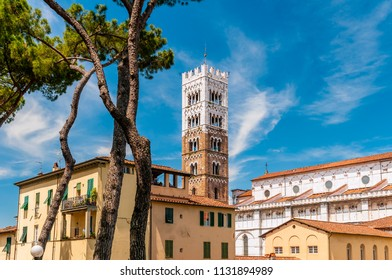 City skyline with Duomo di San Martino cathedral, Lucca, Tuscany, Italy