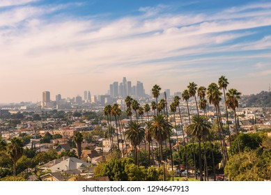 City skyline of Los Angeles in California during sunset with beautiful palm trees in the foreground.
