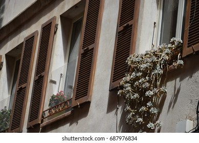 City street view of old windows with plants