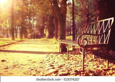 City Trips concept bench in autumn park background