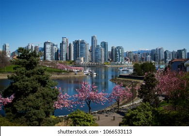 The city of Vancouver from False Creek during a spring afternoon