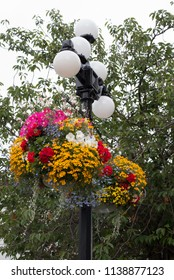 City of Victoria, British Columbia, Canada hanging flower baskets on street lights.  Decorative street lamps with five white globes are a landmark in Victoria every summer.