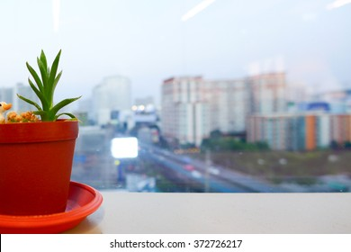 City view with Little Flowerpot at the window in the Office