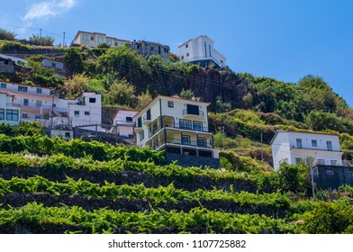 City view from the road and the traditional Portuguese houses. Funchal. Madeira. Portugal