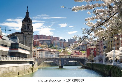 City View with Spring Blossoms - March 2018 - Bilbao, Spain