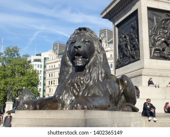 The City of Westminster, Central London, London, England, United Kingdom - 13 May 2019 : The Lion on Nelson's Column a monument to the victory of Trafalgar