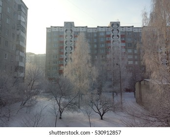 City yard view in cold winter when trees are in frost
