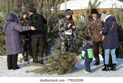 City of Zavodoukovsk, Tyumen region, Russia, December 16, 2017: Sale of New Year trees. The seller offers a choice of buyers Siberian pine.