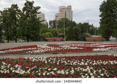 Cityscape. Alley in the park on Tolmacheva street in Yekaterinburg. Flowerbed. Petunias