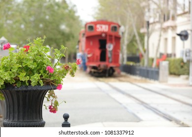 A cityscape of a blurred red caboose in the background and a pink geranium plant in the foreground.