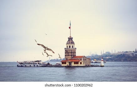 Cityscape of Istanbul with Maiden's Tower and place for your text. Panorama of Bosporus Strait with Kiz Kulesi Tower, seagulls over the sea and silhouettes of mosques in Sultanahmet area on skyline.