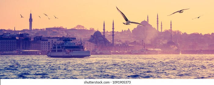 Cityscape of Istanbul in a morning haze, seaside view with silhouettes of mosques in old town. Istanbul skyline with ferryboat and seagulls at sunrize - eastern city in violet, orange and rose colors.