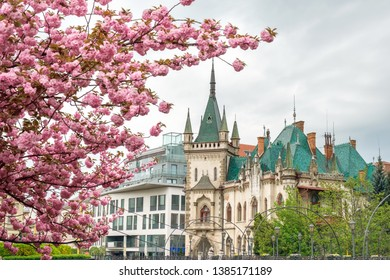 Cityscape Kosice, Slovakia with a historical building Jakab Palace on a background of blossoms sakura in the spring day