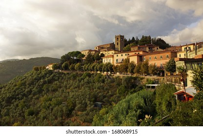 Cityscape of Montecatini, Italy.  The upper old city sits at the top of the mountain showing olive groves