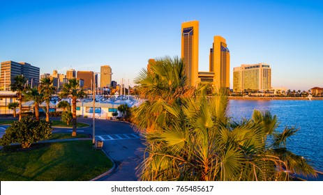 Cityscape Paradise along Tropical Corpus Christi , Texas palm tree view in front of the skyline  marina view of the amazing coastal bend city at sunrise