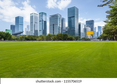 cityscape and skyline of Shenzhen from meadow in park