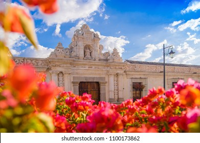Ciudad de Guatemala, Guatemala, April, 25, 2018: Close up of selective focus of blurred flowers with old building with carved structures behind in the city of Antigua in a gorgeous sunny day