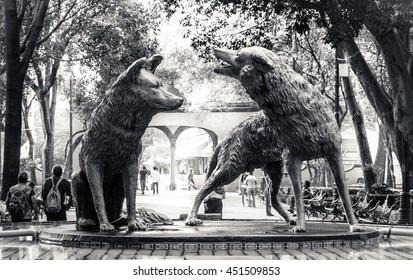 CIUDAD DE MEXICO / MEXICO - FEBRUARY 19 2015: Coyotes fountain in Coyoacan, Mexico City