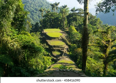 Ciudad Perdida (The Lost City)