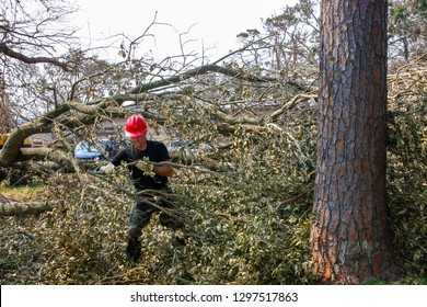 Civil Engineer clears branches felled by Hurricane Katrina. Taken at Keesler AFB, MS on August 20, 2005.
