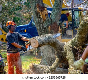 Civil Engineer cuts tree downed by Hurricane Katrina. Image taken at Keesler Air Force Base, MS. On August 16, 2005.