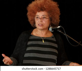 Civil rights icon and sixties radical, Angela Davis