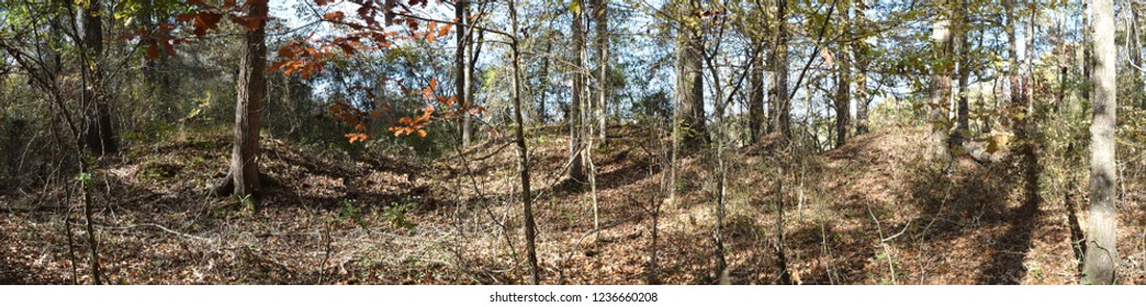 Civil War Earthworks at Tallahatchie Crossing historic site