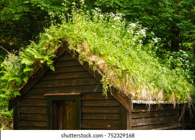 Civilization and nature concept. Norwegian cottage House roof covered with beautiful green moss