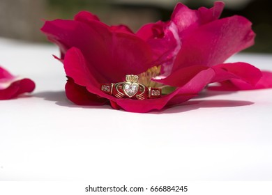 Claddagh Ring with a red rose