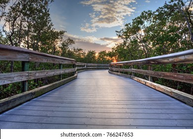 Clam Pass boardwalk that travels over the riverway and marsh estuary that leads down to Clam Pass Beach in Naples, Florida, USA