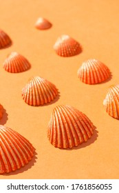 Clam shells painted in different colors. Acrylic paint, tempera. Summer-themed still life.