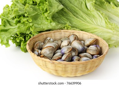 Clams on white background