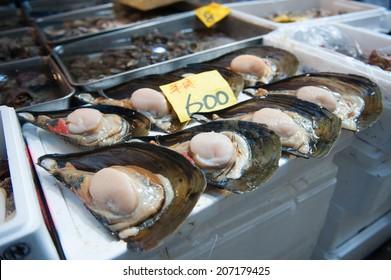 Clams at Tsukiji Market