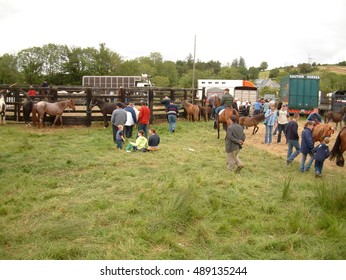 Clare, IRELAND - June 23, 2016: Spancill Hill, Ireland. Spancil Hill  Horse Fair. Spancill Hill Fair, Ireland's and Europe's oldest historic horse fair, which occurs annually on 23 June.