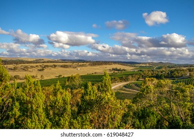 Clare Valley in rural South Australia is a mixture of farming and wine growing properties