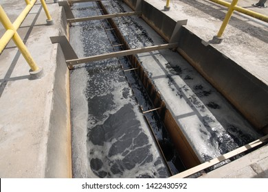 Clarifier cisterns system and effluent for wastewater treatment plant