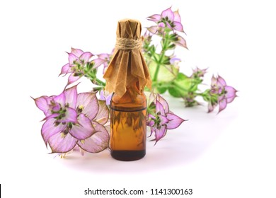 Clary Sage (Salvia Sclarea) Medicinal Herb Plant Distilled Essential Oil in a Glass Container. Isolated on White Background.