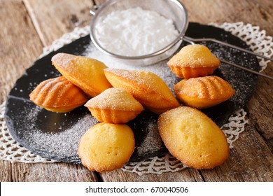 Classic biscuits madeleines with powdered sugar close-up on the board on the table. horizontal
