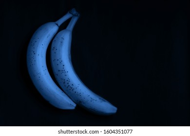 Classic Blue background. Color of the year 2020. Bananas on a dark background. Blue ugly Bananas
