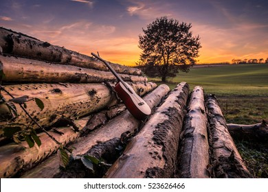 Classic Guitar on Felled Tree Trunks in the Sunset, Buxtehude, Niedersachsen, Germany