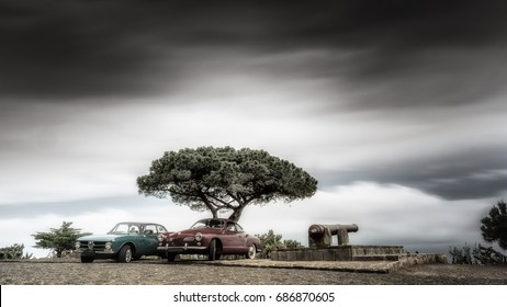 Classic landscape with a tree and clouds. The  Karmann Ghia is a sports car marketed in 2+2 coupe (1955–1974).The Alfa Romeo GT series coupés were a range of cars made by the Italian manufacture.