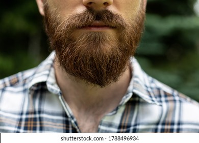Classic male beauty. Brown-haired guy with sideburns, close-up.