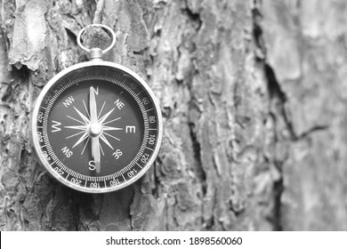 Classic navigation compass on natural background as symbol of tourism with compass, travel with compass and outdoor activities with compass