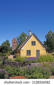 Classic old danish cottage with a thatched roof in a beautiful garden on a bright sunny day