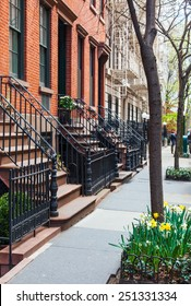 Classic red brick brownstone buildings with black iron railings in Greenwich Village, New York City. Upscale neighborhood. Street trees are planted with spring daffodils.