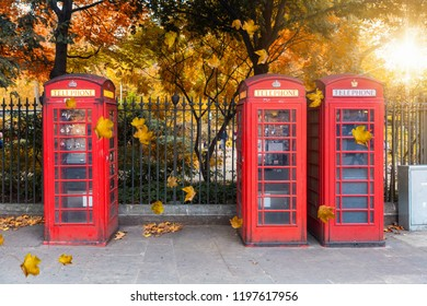 Classic red telephone booths in front of a park in London during autumn time with golden leaves and sunshine